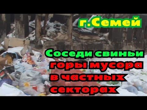 Соседи свиньи город Семей  Горы мусора в частных секторах