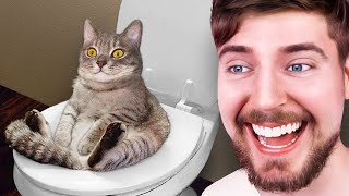 Impossible Try Not To Laugh Challenge!
