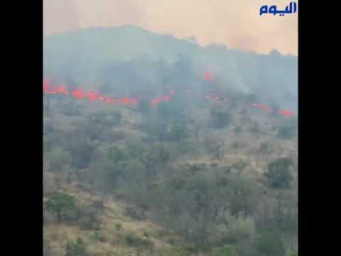 «دينمو»وراء حريق جبل عُمد