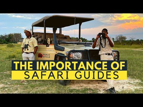 The Importance of Safari Guiding