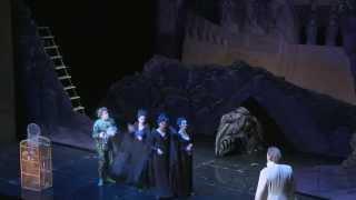 Video: Die Zauberflöte (Schinkel)