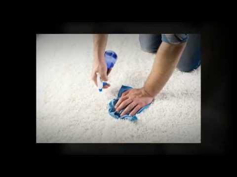 Carpet Cleaning in Brooklyn, NY - Reasons To Clean Your Carpet Year Round