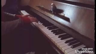 Andulka zpívá k piánu!