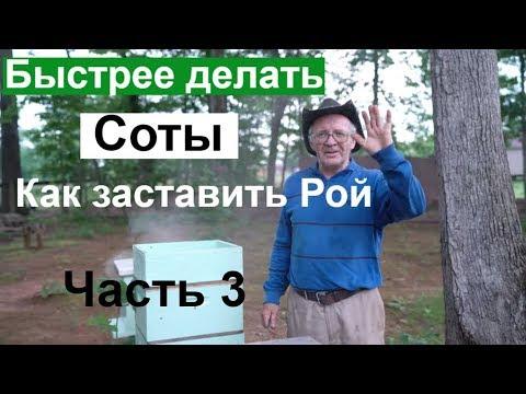 Пасека #120 Как заставить рой быстрее делать соты / Проблемный рой / Пчеловодство для начинающих