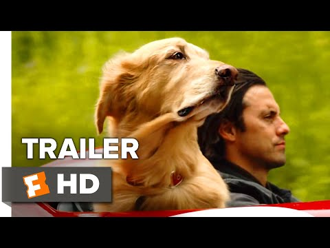 The Art of Racing in the Rain Trailer #1 (2019) | Movieclips Trailers