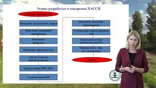 Разработка системы менеджмента безопасности пищевой продукции (система ХАССП)