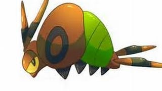 Venipede  - (Pokémon) - shiny venipede after ??? eggs (reupload from other channel)