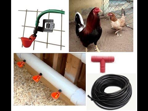 Bebederos automáticos para aves tipo charola con clip.