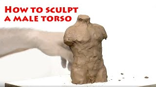 Sculpture Learning: How To Sculpt A Male Torso