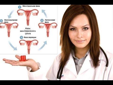 2 ФАЗА МЕНСТРУАЛЬНОГО ЦИКЛА - Тренинг и Питание для Женщин