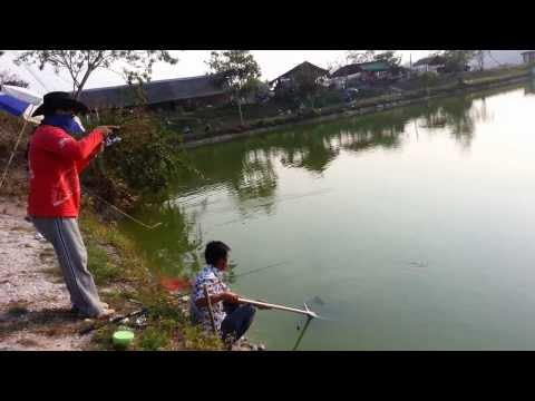 2013 Fishing In ChiangMai Pond