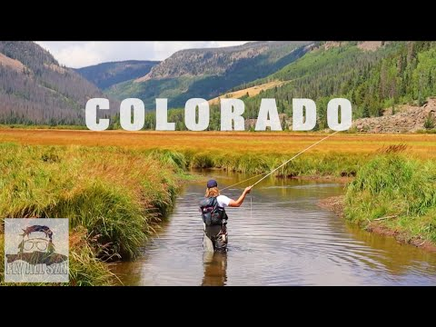 REMOTE FLY FISHING FOR TROPHY TROUT | COLORADO BACKCOUNTRY ADVENTURE | MEAT HANG 2021 EP. 2