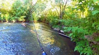 Ловля ельца весной на малых реках