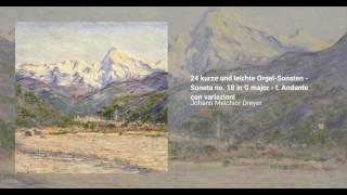 24 kurze und leichte Orgel-Sonaten