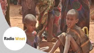 Ks. Paś: 800 mln osób przymiera głodem. Powodami są działania państw, klęski żywiołowe, wojny