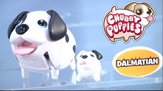 Toy Fair 2016: Spin Master's Air Hogs, Zoomer, The Secret Life of Pets and more