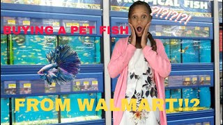 Buying A Pet FISH And Supplies From Walmart!!?