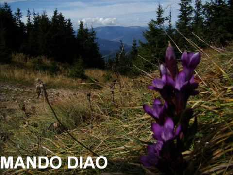 Mando Diao - Ochrasy - (Ode To Ochrasy 2006)