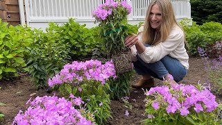 How to Plant Perennials! | Gardening Tips for Beginners