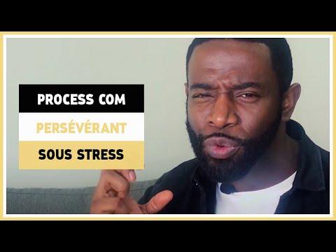 Persévérant en situation de stress - Process Communication