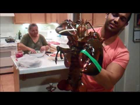 10lb lobster Seafood Healthy food Beast Car Insurance Agent from Upland, CA