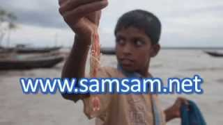preview picture of video 'Garnalen vissers in Bangladesh'