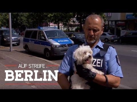 Stress im Kiosk! Hundemarke überführt Täter?!    Auf Streife - Berlin   SAT.1 TV