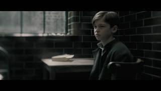 Harry Potter and the Half-Blood Prince (2009) Video