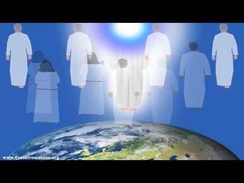 Rapture Animated Video