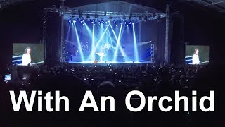YANNI - With An Orchid (Live in Jeddah 2017)