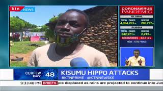 Kisumu Hippo attacks: Human-Wildlife conflict cases on the rise as Hippo attacks become new normal