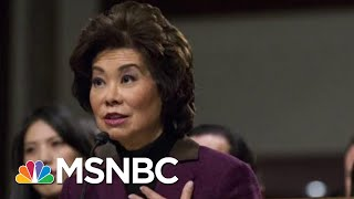 Chao Corruption Shocking Even For Scandal-Plagued Donald Trump Cabinet   Rachel Maddow   MSNBC