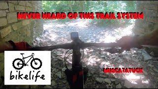 Muscatatuck Trail.