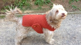 How To Loom Knit A Dog Sweater / Coat (DIY Tutorial)