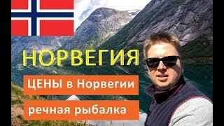 Рыболовный тур в норвегии стоимость