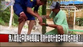 無人敢靠近中國神秘螞蟻山 看到什麼吃什麼日本軍隊也不放過?!黃創夏 眭澔平20161011-7關鍵時刻