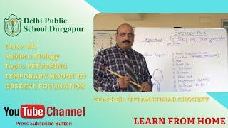 Class XII   TOPIC: PREPARING TEMPORARY MOUNT TO OBSERVE POLLINATION   Biology   Lab   DPS Durgapur