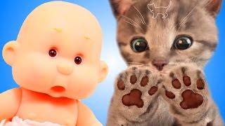 МИ-МИ-МИШКИ Мой Маленький КОТЕНОК и ПУПС СИМУЛЯТОР котика  РАЗВЛЕКАТЕЛЬНОЕ ВИДЕО для детей  СПТВ