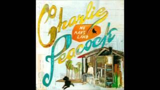 Charlie Peacock - 2 - Mystic - No Man's Land (2012)