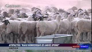 Ο κ. Κώστας Αγοραστός, καλό νομοσχέδιο σε λάθος χρόνο, θεσσαλία tv