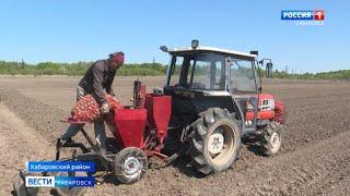 Посадка картофеля на полях Хабаровского района. М.Белокоз
