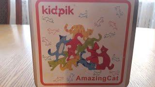 Обзор на головоломку Amazing cat