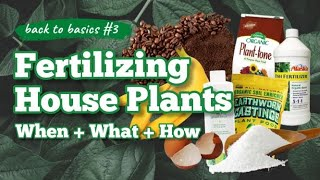 WHEN & HOW TO FERTILIZE HOUSEPLANTS & USING SYNTHETIC v. ORGANIC v. HOMEMADE DIY FERTILIZERS