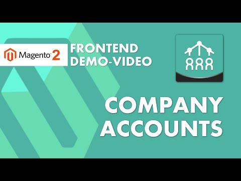 B2B Company Accounts Video