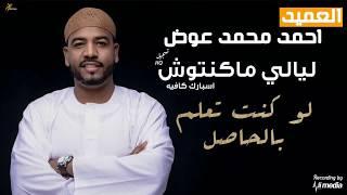 احمد محمد عوض - لو كنت تعلم بالحاصل - ليالي ماكنتوش