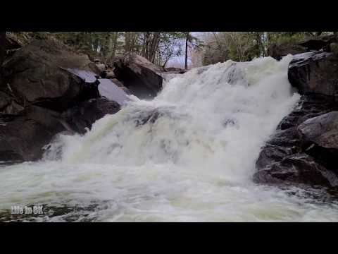 Life in 8K - Cascades in forest at a high rate of flow after spring...