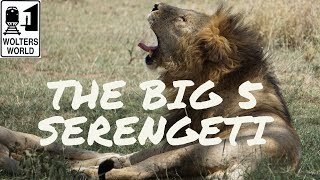 "Safari Travel - How to See ""The Big 5"" in the Serengeti National Park"