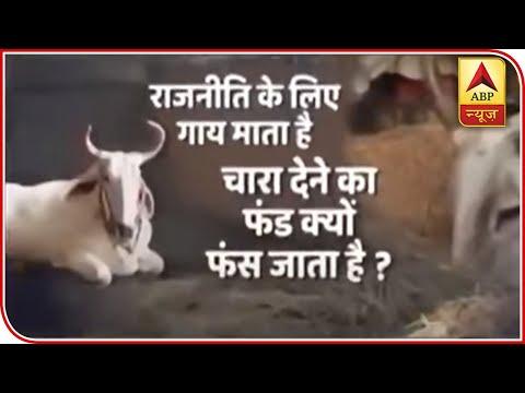 राजनीति में गाय माता है, फिर फंड क्यों फास जाता हैं