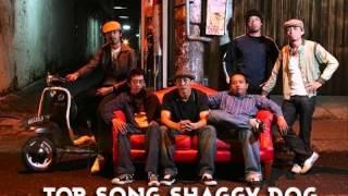 Shaggy Dog Top Song