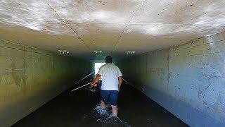 Bow Fishing SUPER Shallow Creek!